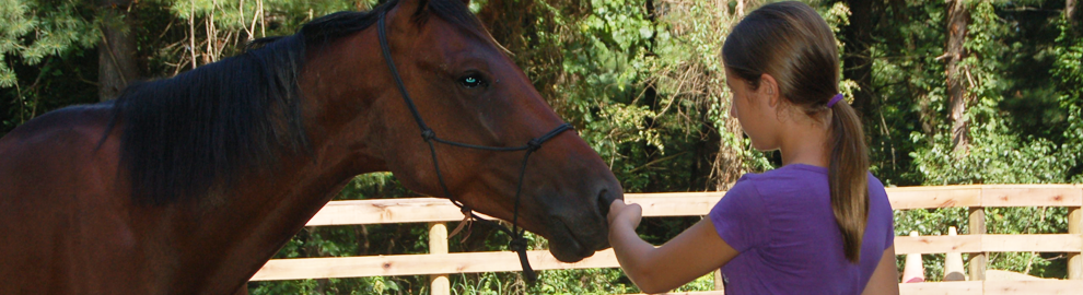 The Osage Corral Equine-Assisted Counseling